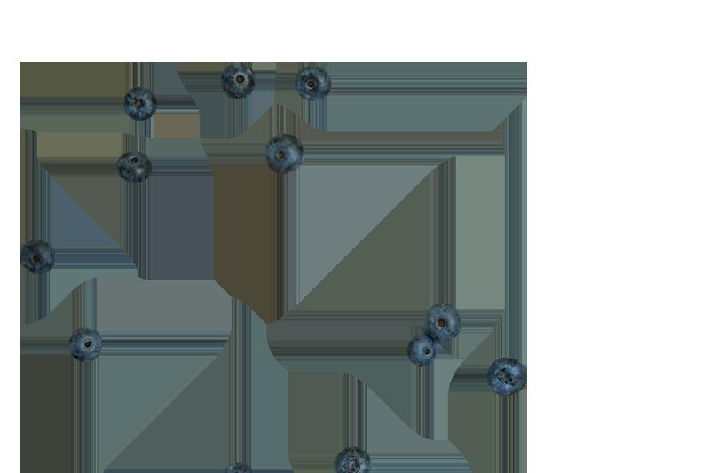 Тарталекти-2